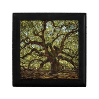 Majestic Angel Oak Small Square Gift Box