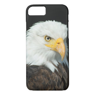 Majestic Bald Eagle Portrait iPhone 7 Case