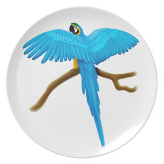 Majestic Blue & Gold Macaw Parrot Plate