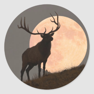 Majestic Bull Elk and Full Moon Rise Classic Round Sticker