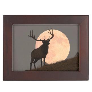 Majestic Bull Elk and Full Moon Rise Keepsake Box