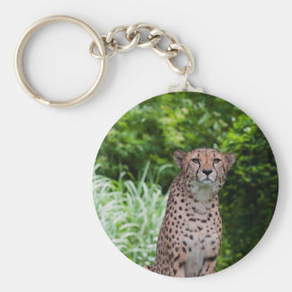 Majestic Cheetah Key Ring