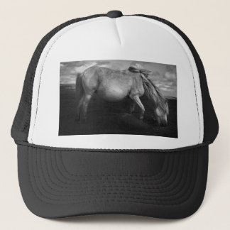 Majestic Dartmoor Pony Portrait meshback hat