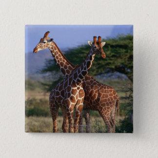 Majestic Giraffes 15 Cm Square Badge