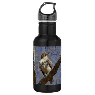 Majestic Hawk 532 Ml Water Bottle