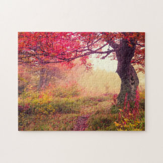 Majestic Landscape With Autumn Trees In Forest Jigsaw Puzzle