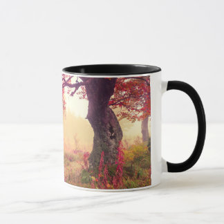 Majestic Landscape With Autumn Trees In Forest Mug