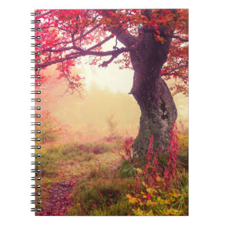 Majestic Landscape With Autumn Trees In Forest Notebook