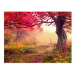Majestic Landscape With Autumn Trees In Forest Postcard