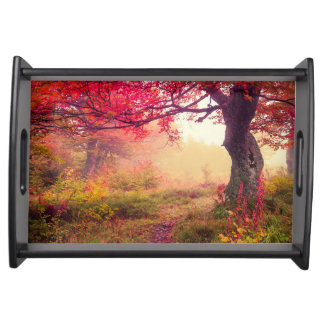 Majestic Landscape With Autumn Trees In Forest Serving Tray