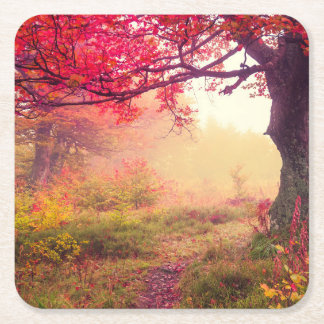 Majestic Landscape With Autumn Trees In Forest Square Paper Coaster