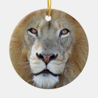 Majestic Lion Close Up Christmas Ornament