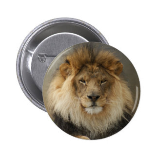 MAJESTIC LION GIFTS 6 CM ROUND BADGE