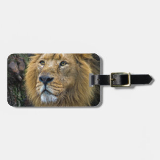 Majestic lion luggage tag