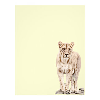 Majestic Lioness 21.5 Cm X 28 Cm Flyer