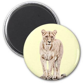 Majestic Lioness 6 Cm Round Magnet