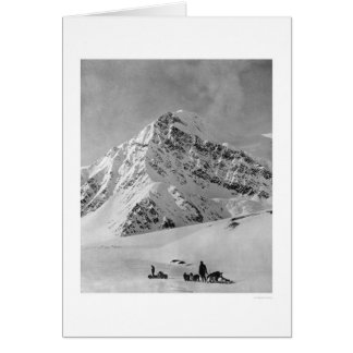 Majestic Mt McKinley 1908 Greeting Cards