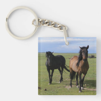 Majestic Navajo Mustangs Single-Sided Square Acrylic Key Ring