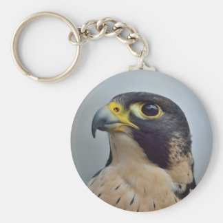 Majestic Peregrine falcon Basic Round Button Key Ring