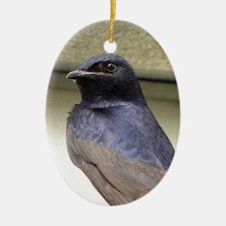 Majestic Purple Martin Christmas Ornament