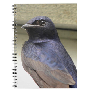Majestic Purple Martin Spiral Notebook