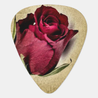 Majestic Red Roses on Brownish Background Guitar Pick