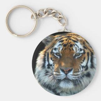 Majestic Sumatran Tiger Basic Round Button Key Ring