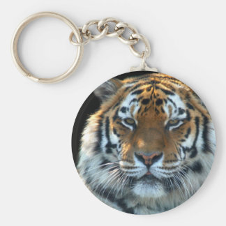 Majestic Sumatran Tiger Key Ring
