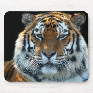 Majestic Sumatran Tiger Mouse Mat