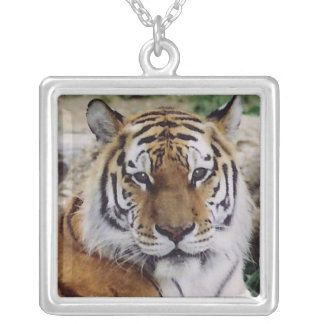 Majestic Tiger Necklaces