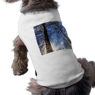 Majestic Trees Shirt
