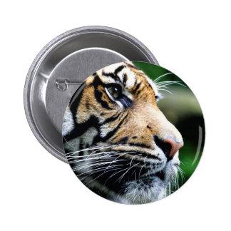 Majesty 6 Cm Round Badge