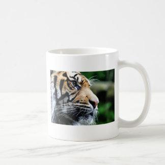 Majesty Basic White Mug