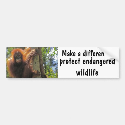 Make a Difference with Animal Charity Bumper Sticker