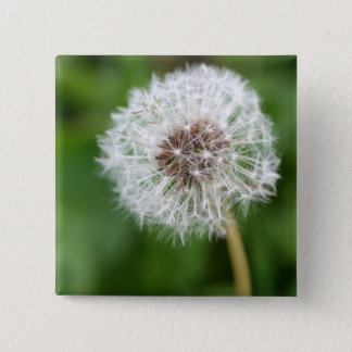 Make A Wish! Dandelion 15 Cm Square Badge