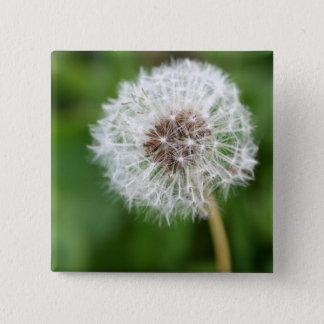 Make A Wish! Dandelion 15 Cm Square Badge