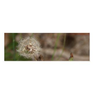 Make a Wish Dandelion Clock Pack Of Skinny Business Cards
