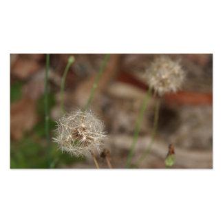 Make a Wish Dandelion Clock Business Cards