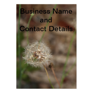 Make a Wish Dandelion Clock Pack Of Chubby Business Cards