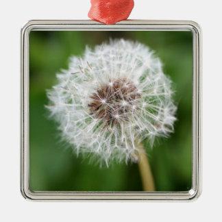Make A Wish! Dandelion Square Ornament