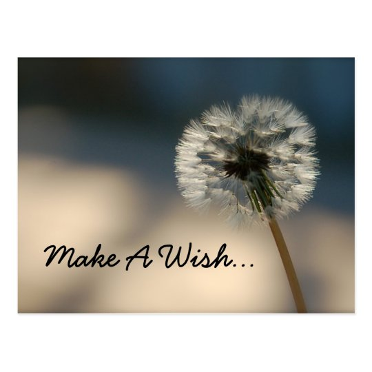 Make A Wish Postcard