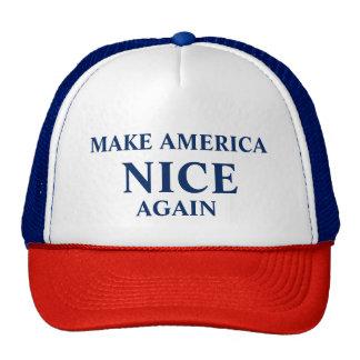 """Make American NICE Again"" hat"