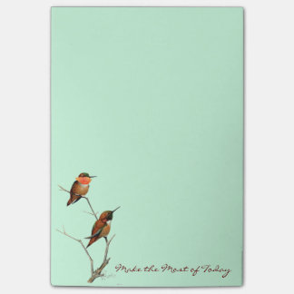 Make the Most of Today: Rufous Hummingbirds Art Post-it Notes