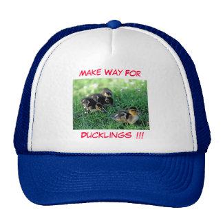 Make Way For Ducklings!!! Cap