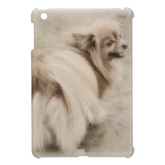 Make Your Own Pet Photograph Case For The iPad Mini