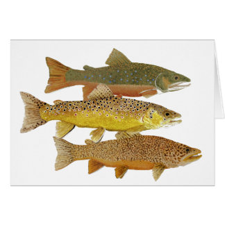 Making a Tiger Trout Card