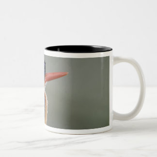 Malachite Kingfisher, Alcedo cristata, Lake Two-Tone Coffee Mug