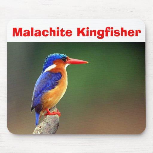 Malachite Kingfisher, Malachite Kingfisher Mouse Pads