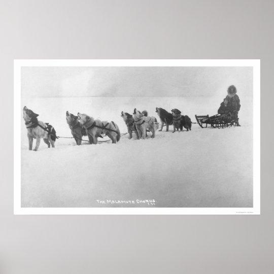 Malamute Chorus Alaska 1920 Poster