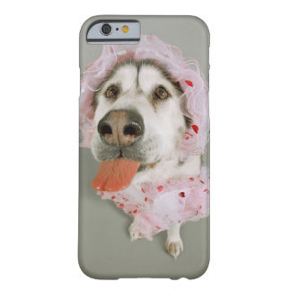 Malamute Dog Wearing a Tutu and Sticking Out Barely There iPhone 6 Case